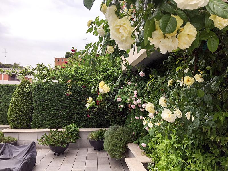 allestimento terrazzi - Idea Verde